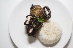 Ρόλοι μελιτζανών με το ρύζι Στοκ φωτογραφίες με δικαίωμα ελεύθερης χρήσης