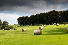 Ρόλοι σανού σε έναν πράσινο τομέα στην ιρλανδική επαρχία Στοκ εικόνα με δικαίωμα ελεύθερης χρήσης