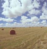Ρόλοι σανού στο αγροτικό τοπίο χωρών στοκ φωτογραφίες με δικαίωμα ελεύθερης χρήσης