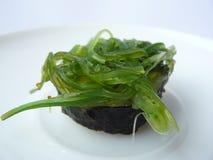 Ρόλος σουσιών σαλάτας φυκιών Στοκ φωτογραφία με δικαίωμα ελεύθερης χρήσης