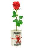 Ρόλος των χρημάτων και του λουλουδιού Στοκ εικόνα με δικαίωμα ελεύθερης χρήσης