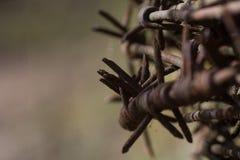 Ρόλος barbed-wire στοκ φωτογραφία