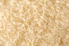 ρύζι ανασκόπησης Στοκ Φωτογραφίες