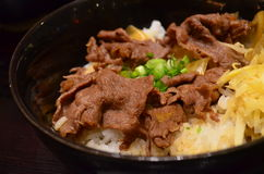 Ρύζι βόειου κρέατος στοκ εικόνες