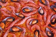 ρύζι γαρίδων μυδιών Στοκ Εικόνες