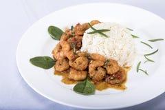 Ρύζι και γαρίδες γεύματος διατροφής Στοκ φωτογραφία με δικαίωμα ελεύθερης χρήσης