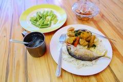 Ρύζι και κάρρυ, ταϊλανδικά τρόφιμα στοκ φωτογραφίες με δικαίωμα ελεύθερης χρήσης