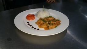 ρύζι και κοτόπουλο τσίλι ραχών pice Στοκ φωτογραφία με δικαίωμα ελεύθερης χρήσης