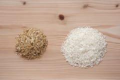 ρύζι και φλούδες ρυζιού Στοκ Εικόνα