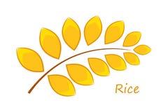 Ρύζι κινούμενων σχεδίων Στοκ Εικόνες