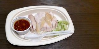 Ρύζι κοτόπουλου Hainanese που τίθεται στο πιάτο εγγράφου, εκτός από το παγκόσμιο ανακύκλωσης Di στοκ φωτογραφία με δικαίωμα ελεύθερης χρήσης