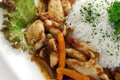 ρύζι κρέατος στοκ εικόνα