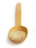 ρύζι κόκκων Στοκ φωτογραφίες με δικαίωμα ελεύθερης χρήσης