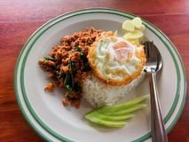 Ρύζι με ανακατώνω-τηγανισμένος του φύλλου χοιρινού κρέατος και βασιλικού Στοκ Φωτογραφίες