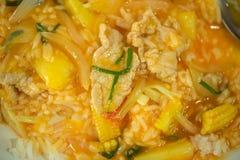 Ρύζι με τα λαχανικά και το κρέας Στοκ φωτογραφία με δικαίωμα ελεύθερης χρήσης