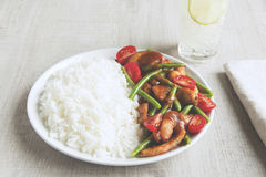 Ρύζι με την πράσινες ντομάτα και τη σάλτσα φασολιών λωρίδων κοτόπουλου Στοκ φωτογραφία με δικαίωμα ελεύθερης χρήσης