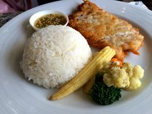Ρύζι με την τηγανισμένη σάλτσα ψαριών κοτόπουλου Στοκ φωτογραφία με δικαίωμα ελεύθερης χρήσης