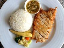 Ρύζι με την τηγανισμένη σάλτσα ψαριών κοτόπουλου Στοκ Φωτογραφίες