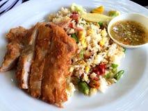 Ρύζι με την τηγανισμένη σάλτσα ψαριών κοτόπουλου Στοκ Εικόνα