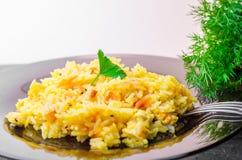 Ρύζι με το κρέας, plov Στοκ εικόνα με δικαίωμα ελεύθερης χρήσης