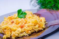 Ρύζι με το κρέας, plov Στοκ Φωτογραφία