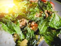 Ρύζι με το χοιρινό κρέας και το βασιλικό Στοκ Φωτογραφία