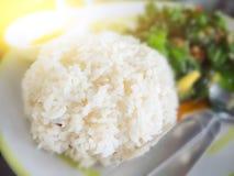 Ρύζι με το χοιρινό κρέας και το βασιλικό Στοκ φωτογραφίες με δικαίωμα ελεύθερης χρήσης