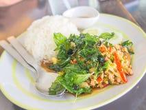 Ρύζι με το χοιρινό κρέας και το βασιλικό Στοκ φωτογραφία με δικαίωμα ελεύθερης χρήσης