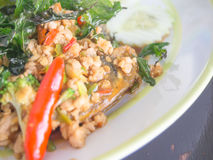 Ρύζι με το χοιρινό κρέας και το βασιλικό Στοκ Εικόνα