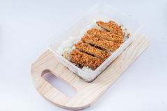 Ρύζι με cutlet Tonkatsu χοιρινού κρέατος Στοκ εικόνα με δικαίωμα ελεύθερης χρήσης