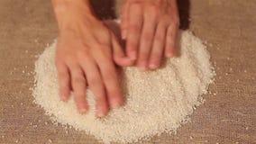 Ρύζι ομαλό έξω burlap συγκομιδή ομαλά έξω χέρια απόθεμα βίντεο