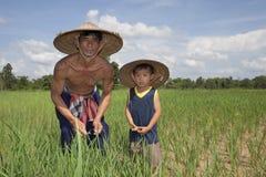 ρύζι ορυζώνα ατόμων παιδιών &Tau Στοκ Φωτογραφία