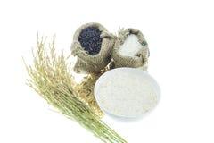 Ρύζι που απομονώνεται στο άσπρο υπόβαθρο Στοκ φωτογραφίες με δικαίωμα ελεύθερης χρήσης