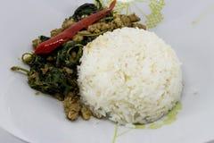 Ρύζι που ολοκληρώνεται με το ανακατώνω-τηγανισμένους χοιρινό κρέας και το βασιλικό στοκ φωτογραφίες με δικαίωμα ελεύθερης χρήσης