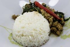 Ρύζι που ολοκληρώνεται με το ανακατώνω-τηγανισμένους χοιρινό κρέας και το βασιλικό στοκ εικόνα