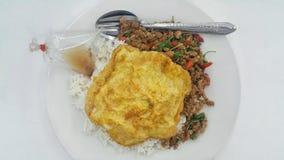 ρύζι που ολοκληρώνεται με το ανακατώνω-τηγανισμένους χοιρινό κρέας και το βασιλικό με τη σάλτσα ομελετών και ψαριών Στοκ εικόνες με δικαίωμα ελεύθερης χρήσης