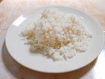 Ρύζι ρευμάτων Στοκ εικόνες με δικαίωμα ελεύθερης χρήσης