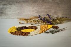 Ρύζι, σιτάρι φαγόπυρου, καλαμπόκι, μπιζέλι, semolina, φακή και και άλλες σιτάρια Στοκ φωτογραφία με δικαίωμα ελεύθερης χρήσης