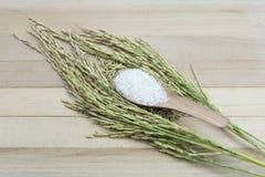 Ρύζι στο ξύλινο υπόβαθρο Στοκ Εικόνα