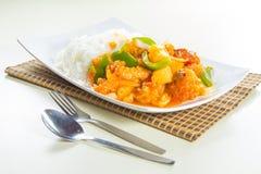 Ρύζι ύφους του Χογκ Κογκ με το κρέας Στοκ Φωτογραφία
