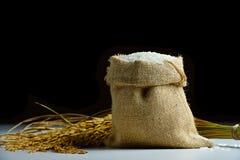 Ρύζι burlap στο σάκο στοκ φωτογραφίες