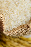Ρύζι burlap στο σάκο στοκ εικόνα με δικαίωμα ελεύθερης χρήσης