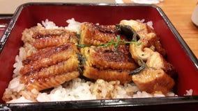 Ρύζι Unagi Στοκ Εικόνα