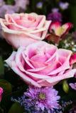 Ρύθμιση αριθμός 3 θερινών λουλουδιών Στοκ Εικόνα