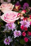 Ρύθμιση αριθμός 2 θερινών λουλουδιών Στοκ εικόνα με δικαίωμα ελεύθερης χρήσης