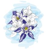 Ρύθμιση λουλουδιών σε ένα γραφικό ύφος σκίτσων ελεύθερη απεικόνιση δικαιώματος