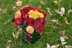 Ρύθμιση λουλουδιών σε ένα κιβώτιο, ένα δοχείο με το ροζ, κόκκινο, πορτοκάλι, marsala για ένα κορίτσι ως δώρο με τα τριαντάφυλλα,  στοκ φωτογραφίες