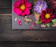 Ρύθμιση λουλουδιών με τις ντάλιες στο σκοτεινό πίνακα, υπόβαθρο Στοκ Εικόνες