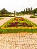 ρύθμιση λουλουδιών Στοκ εικόνες με δικαίωμα ελεύθερης χρήσης