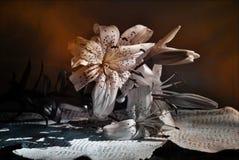 ρύθμιση λουλουδιών Στοκ Φωτογραφία